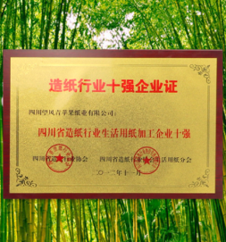 四川省造紙行業十強企業證