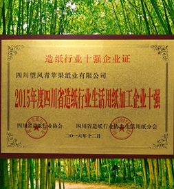 四川省生活用紙十強企業